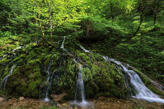 Vorschau-Salmendinger-Wasserfall